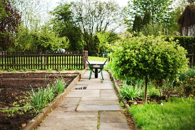 kolečko na zahradě
