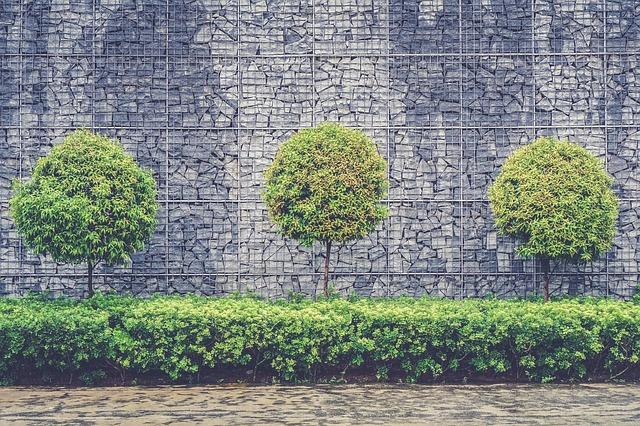 kamenná stěna